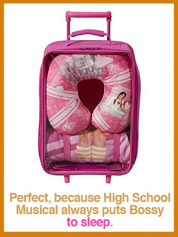 HSM-luggage.jpg