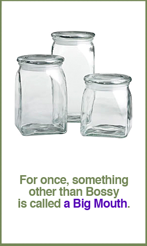 big-mouth-glass-cannisters.jpg