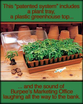 burpee-seed-starter.jpg