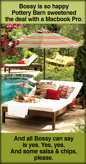 Chesapeake Double Chaise & Cushion