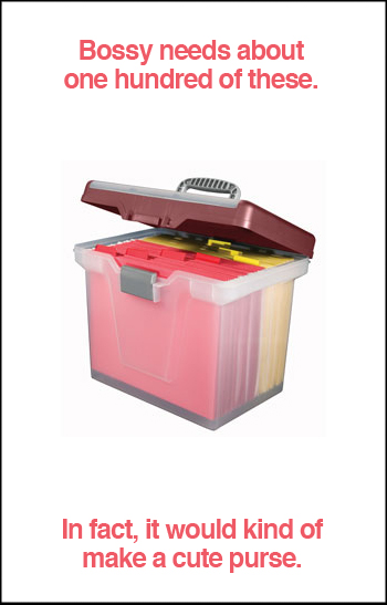 Large Mobile File Box
