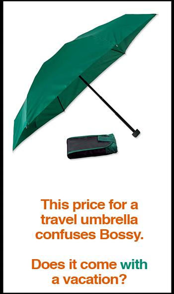 compact-travel-umbrella.jpg