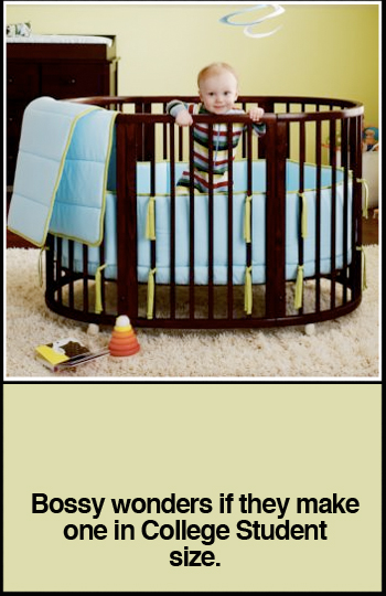 Seepi Stokke Crib and Bassinet