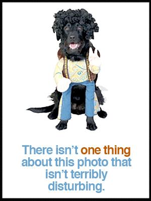 hippy-dog-costume.jpg