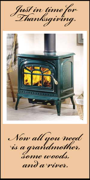 Napoleon Cast Iron Wood Stove
