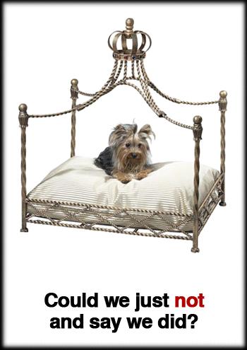 pet-canopy-bed.jpg