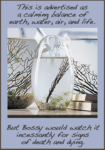 Small 5″ Pod EcoSphere