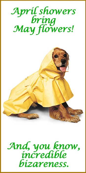 puddles-dog-rainwear.jpg
