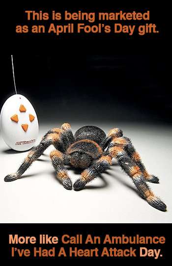 remote-control-tarantula.jpg