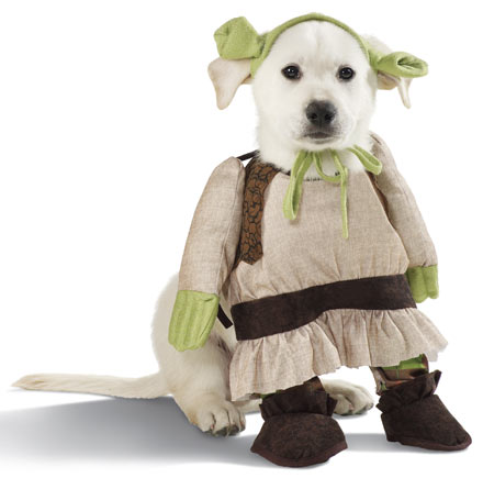 shrek%20dog%20costume.jpg