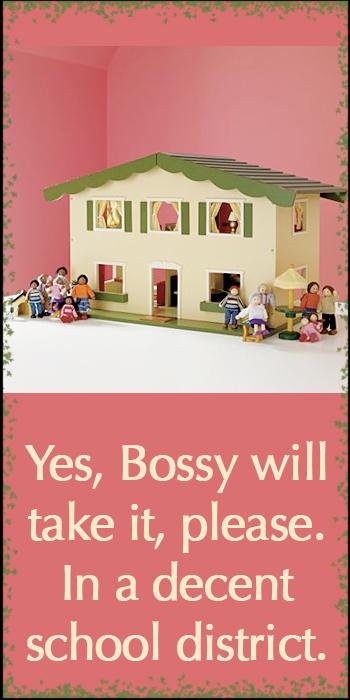 starter-doll-house.jpg