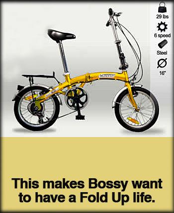tokyo-folding-bike.jpg