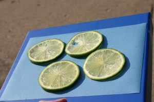 sun print art (limes)