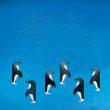 penguinsmallconcept.jpg
