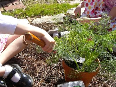 herb-garden-3.jpg