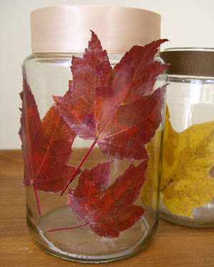 Jar of Thanks with leaves