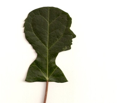 mothers_day_leaf_silhouette.png