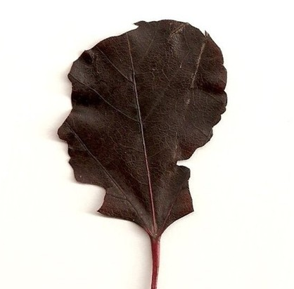 mothers_day_leaf_silhouette_2.png