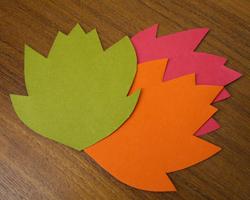 paper-leaves.jpg