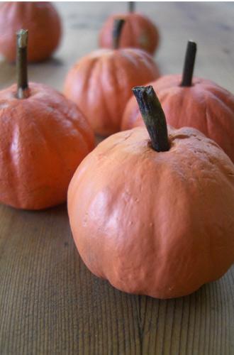 pumpkins-1a.jpg
