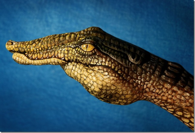 hotspot_handpaint_croc.jpg