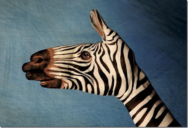 hotspot_zebra_handpaint.jpg