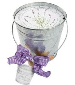 Gardening Week: Mini Lavender Garden
