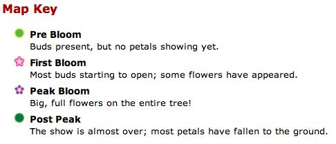 lastweekend_brooklyn_botanic_key.png