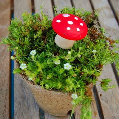 holiday_toadstools.png