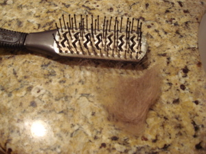 How To Clean a Hairbrush?