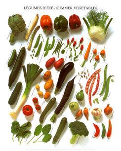 KE036~Summer-Vegetables-Posters.jpg