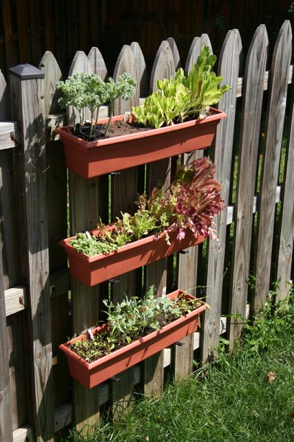 Front Yard Vegetable Garden Pots