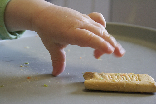 Beyond the Cereal Box: Wholesome Finger Foods For Babies