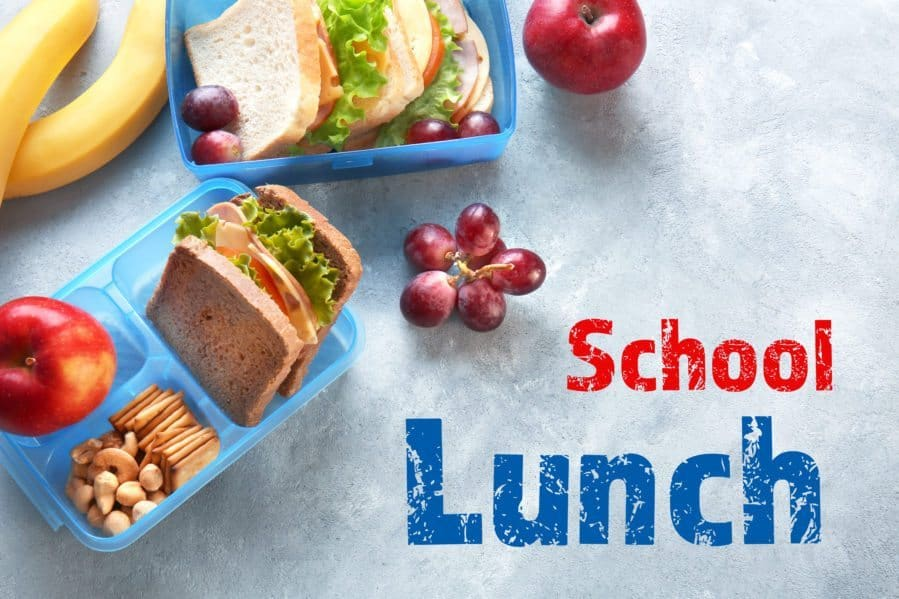 Lunchboxes with sandwiches, fruit and nuts