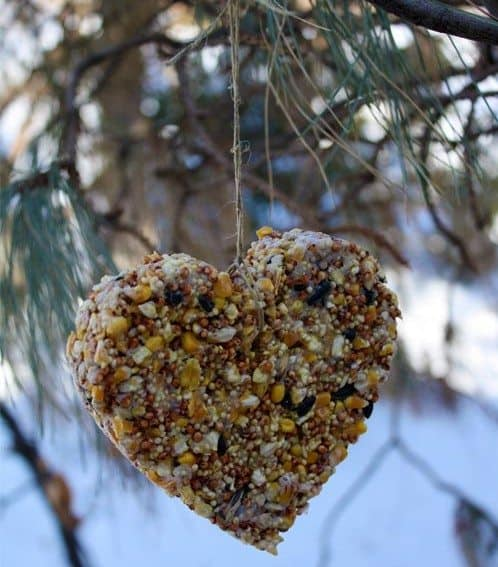 Homemade Heart Birdfeeder