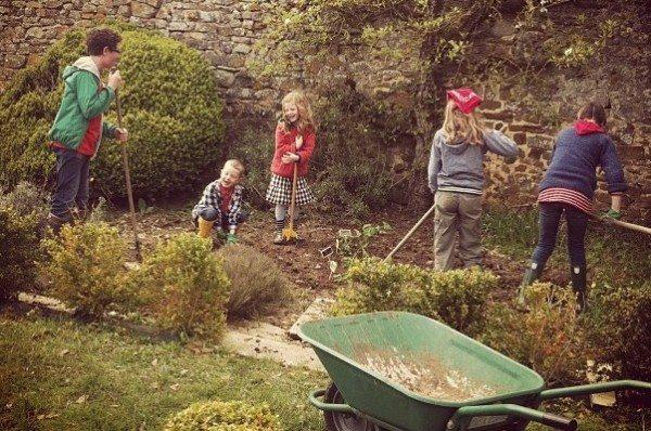 Olive Us Gardening