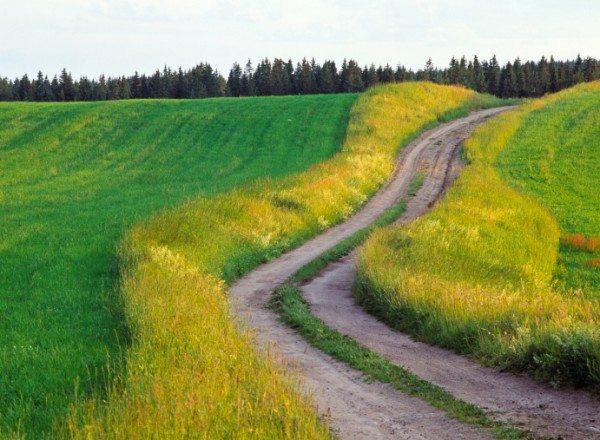 Beautiful Road Ahead