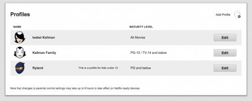 Netflix Stream Team Individual Profiles