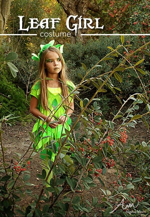 No-Sew Leaf Fairy Costume by Brenda Ponnay for Alphamom.com