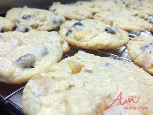 World's Best Chocolate Chip Cream Cheese Cookies Recipe