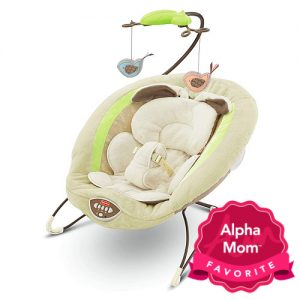 Best Bouncy Seats & Rockers: My Little Snugabunny Bouncer by Fisher Price