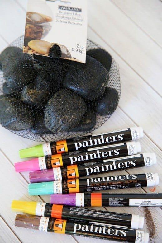 DIY Pet Rocks by Cindy Hopper for Alphamom.com
