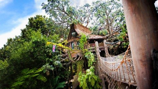 Things to Do & See with Kids at Disneyland (Tarzan's Treehouse plus more!)