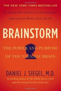 (Book Group Review and Discussion) Brainstorm: The Power and Purpose of The Teenage Brain by Daniel Siegel, MD