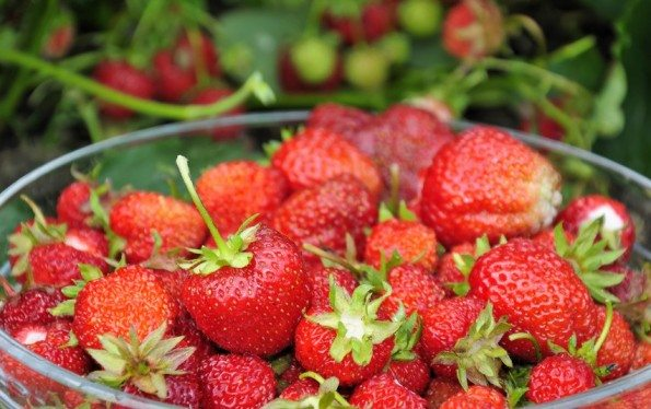 The Tao Of Strawberries (and our favorite recipes)