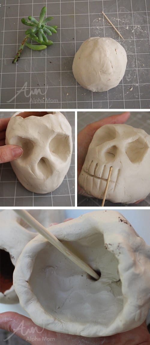 DIY Skull Planters for Halloween (How-to Steps) by Brenda Ponnay for Alphamom.com