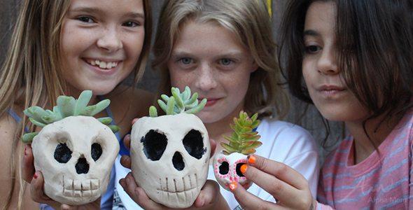 DIY Skull Planters for Halloween by Brenda Ponnay for Alphamom.com