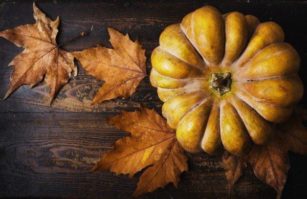 Thanksgiving Apart: Still Thankful