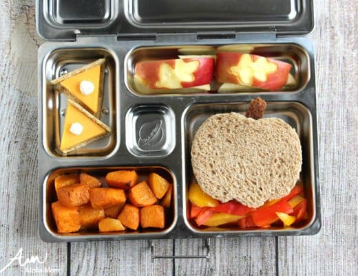 Fall Harvest Lunch Bento Box