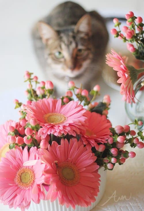 Valentine Crafting: a Tween Girl Bonding Experience (pretty flowers) by Brenda Ponnay by Alphamom.com
